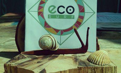 Curso de Surf (Eco-Surf)