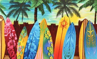 Alquiler de Surf (Eco Surf)