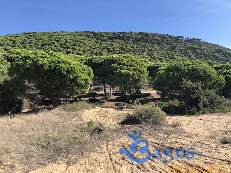 Casa Maria Planta Baja